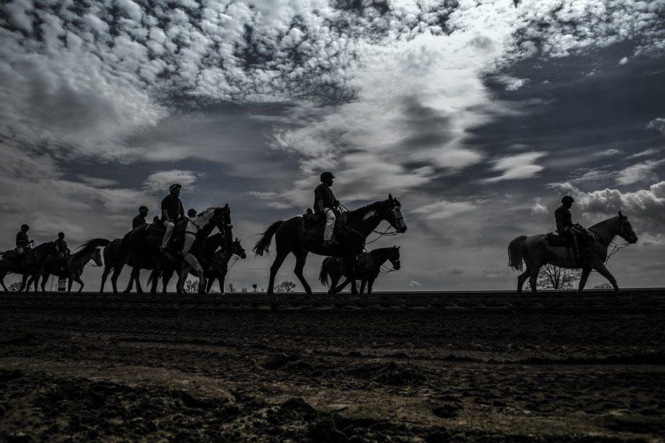 Horse Race in Kentucky, Kentucky derby silhouette