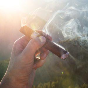 A hand holding a smoking Cigar