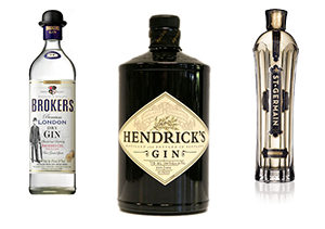 various kinds of Hendricks gin