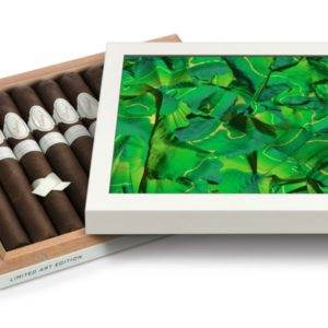Davidoff art edition box with green cover