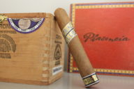 In our humidor, a Fratello cigar leaning against a cigar box