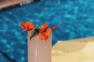 Ron Barcelo Pretty Girl Mojito by the pool