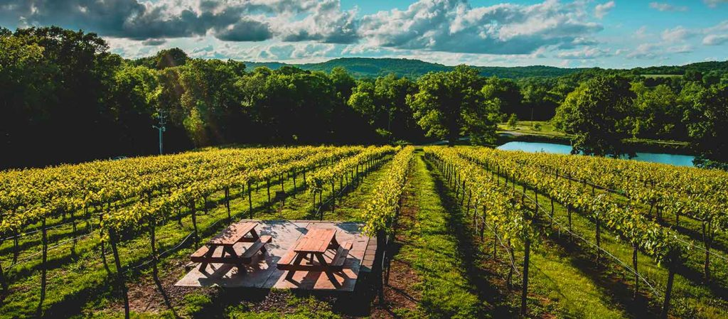 Chandler Hill 1 5 best wineries