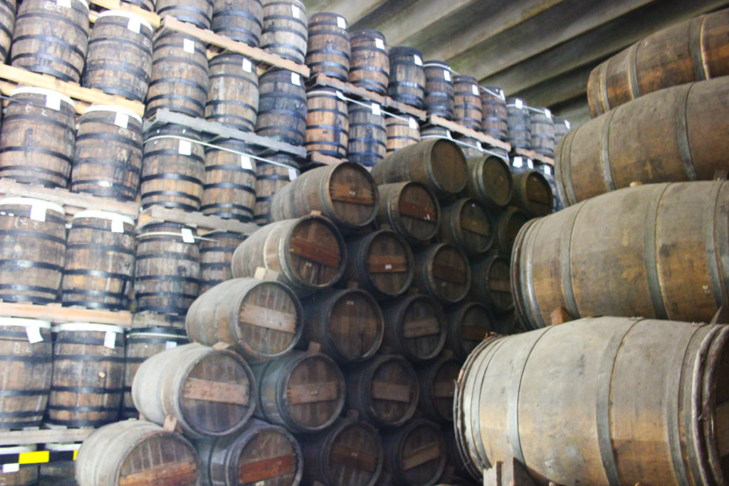 ron barcelo tour rum barrels