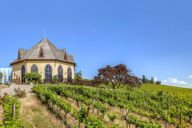 ste chapelle 1 5 best wineries