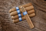 300 hands southern draw cigars
